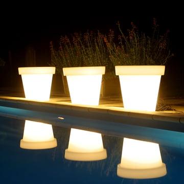 Pot de fleur avec un éclairage en blanc