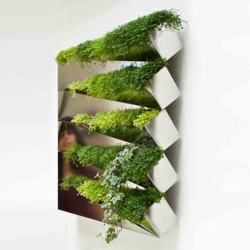 Edition Compagnie - Miroir en Herbe