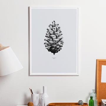 Paper Collective - Nature 1 : 1 Pomme de Pin (gris)