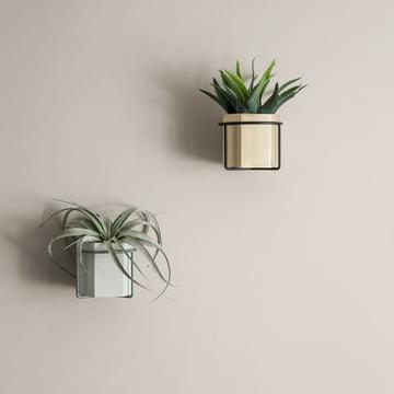 Pot Hexagon, vase et support de plante