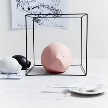 La collection Roro en rose, noir et blanc de Rosenthal.