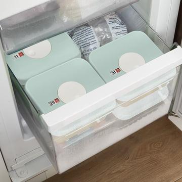 Grande boîte avec petites boîtes-portions refermables