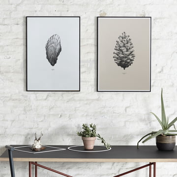 Paper Collective - Poster Nature 1:1 Pine Cone (crème)/1:1 Oyster (blanc)
