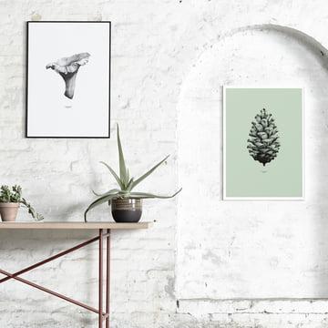 Paper Collective - 1:1 Chanterelle (blanc)/1:1 Pine Cone (vert menthe)