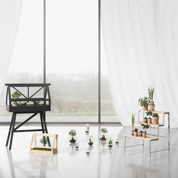 Flower Pot Stand et Greenhouse