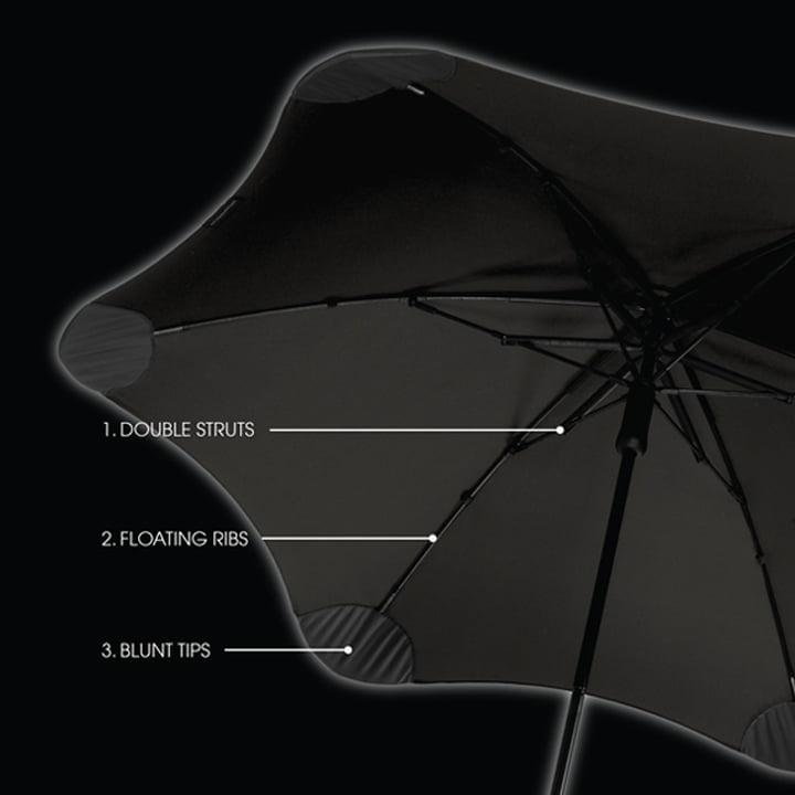 Parapluie de Blunt - structure