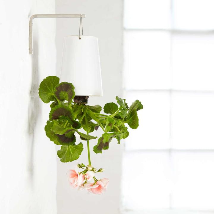 Boskke - Sky Planter Ceramic