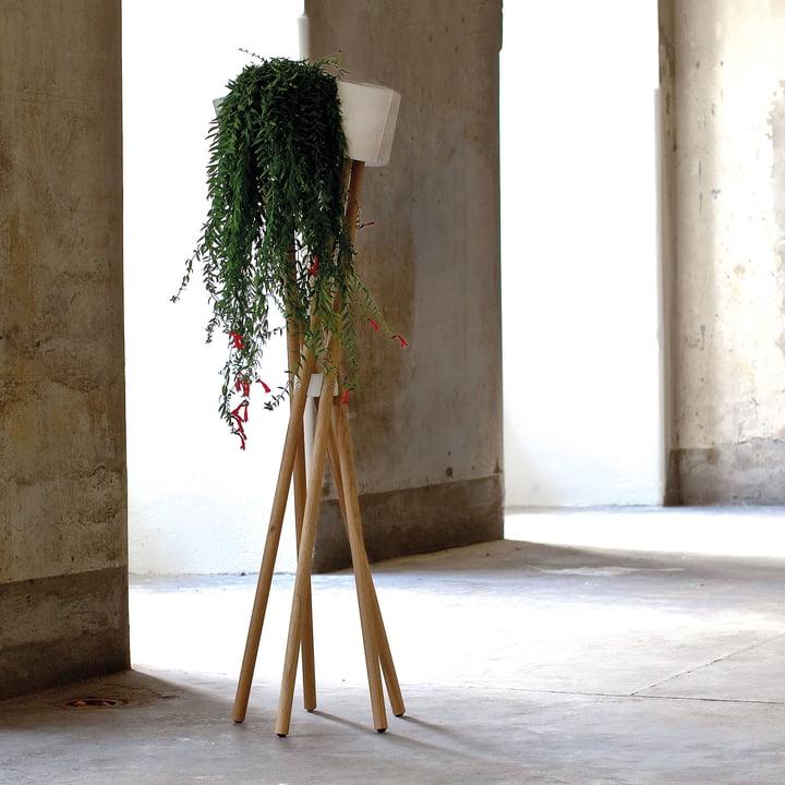 Le hochgarten d'urbanature en chêne avec cache-pot béton blanc