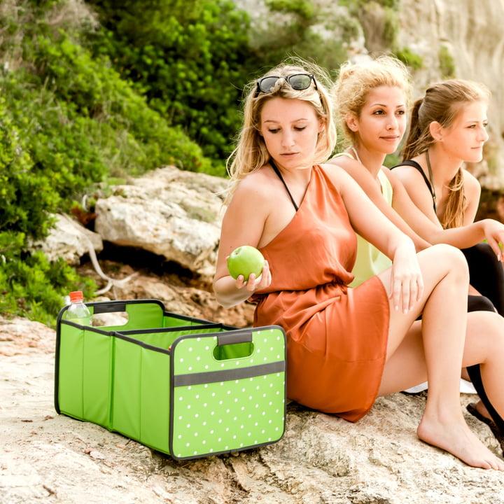 meori - Boîte pliante CLASSIQUE 30litres, vert pomme à pois